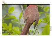 Cardinal Pictures 123 Carry-all Pouch