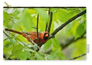 Cardinal Pictures 138 Carry-all Pouch