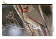 Cardinal Pictures 50 Carry-all Pouch
