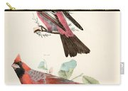 Cardinals Carry-all Pouch by Philip Ralley