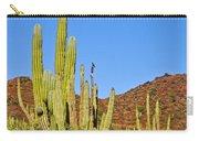 Cardon Cactus In Bahia Kino-sonora-mexico Carry-all Pouch