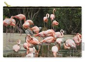 Caribbean Flamingos - Phoenicopterus Ruber Ruber Carry-all Pouch