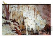 Carlsbad Caverns Carry-all Pouch