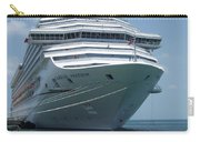 Carnival Freedom Bow Carry-all Pouch