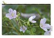 Carolina Spring Beauty - Wide-leaved Spring Beauty - Claytonia Caroliniana Carry-all Pouch