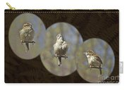 Carolina Wren - Thryothorus Ludovicianus Carry-all Pouch