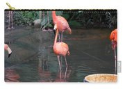 Cartoon - A Flamingo In The Small Lake In Their Exhibit In The Jurong Bird Park Carry-all Pouch