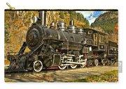 Cascade Mountain Train Carry-all Pouch