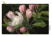 Cascade Of Apple Blossoms Carry-all Pouch