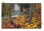 Cascade Creek  Autumn Carry-all Pouch