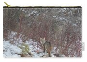 Cat Beauty Carry-all Pouch