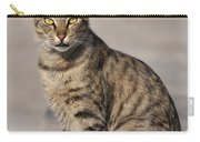 Cat In Aegina Island Carry-all Pouch
