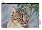 Cat In Athens Carry-all Pouch