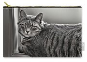 Cat In Window Carry-all Pouch