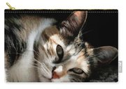 Cat Napping In The Sun By David Perry Carry-all Pouch