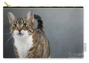 Cat Portrait Carry-all Pouch by Nailia Schwarz