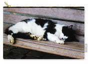 Cat Sleeping On Bench Carry-all Pouch