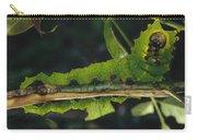 Caterpillar Tam Dao Np Vietnam Carry-all Pouch