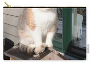 Catfeeder Carry-all Pouch