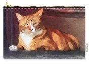 Cats - Orange Tabby In Doorway Carry-all Pouch