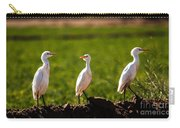Cattle Egrets Carry-all Pouch
