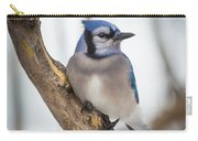 Cautious Blue Jay Carry-all Pouch