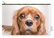 Cavalier King Charles Spaniel Puppy Carry-all Pouch by Edward Fielding