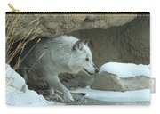 Cave Dweller Carry-all Pouch
