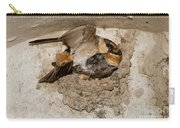 Cave Swallows Carry-all Pouch