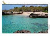 Cayman Beach Carry-all Pouch
