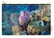 Cayman Reef Carry-all Pouch