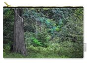 Cedar Along The Trail Of Cedars Glacier National Park Painted Carry-all Pouch