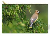 Cedar Waxwing 3 Carry-all Pouch