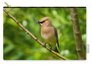 Cedar Waxwing Gathering Nesting Material Carry-all Pouch