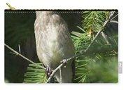 Cedar Waxwing Juvenile 2 Carry-all Pouch