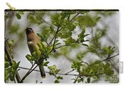 Cedar Waxwing Pictures 15 Carry-all Pouch