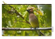 Cedar Waxwing Pictures 38 Carry-all Pouch