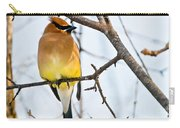 Cedar Waxwing Pictures 53 Carry-all Pouch