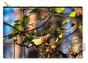 Cedar Waxwing Preparing To Fly Carry-all Pouch
