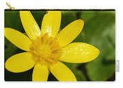 Celandine Carry-all Pouch