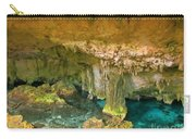 Cenote Two Carry-all Pouch