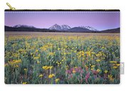 Central Idaho Color Carry-all Pouch