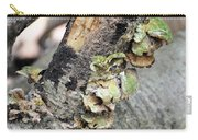 Violet-toothed Polypore Carry-all Pouch