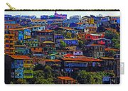 Cerro Valparaiso Carry-all Pouch