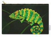 Chameleon Carry-all Pouch by Anastasiya Malakhova