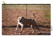 Charging Pitbull Carry-all Pouch
