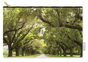 Charleston Avenue Of Oaks Carry-all Pouch by Stephanie McDowell