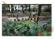 Charleston Waterfront Park Benches Carry-all Pouch by Carol Groenen