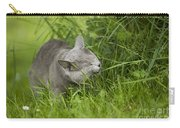 Chartreux Cat And Grass Carry-all Pouch