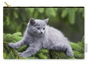 Chartreux Kitten Carry-all Pouch